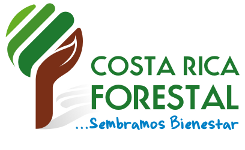 Revista Costa Rica Forestal