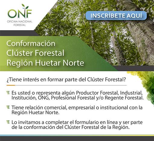 Conformación Clúster Forestal Región Huetar Norte