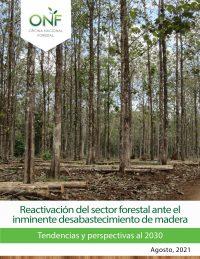 Reactivación del sector forestal ante inminente desabastecimiento de madera: tendencias y perspectivas al 2030