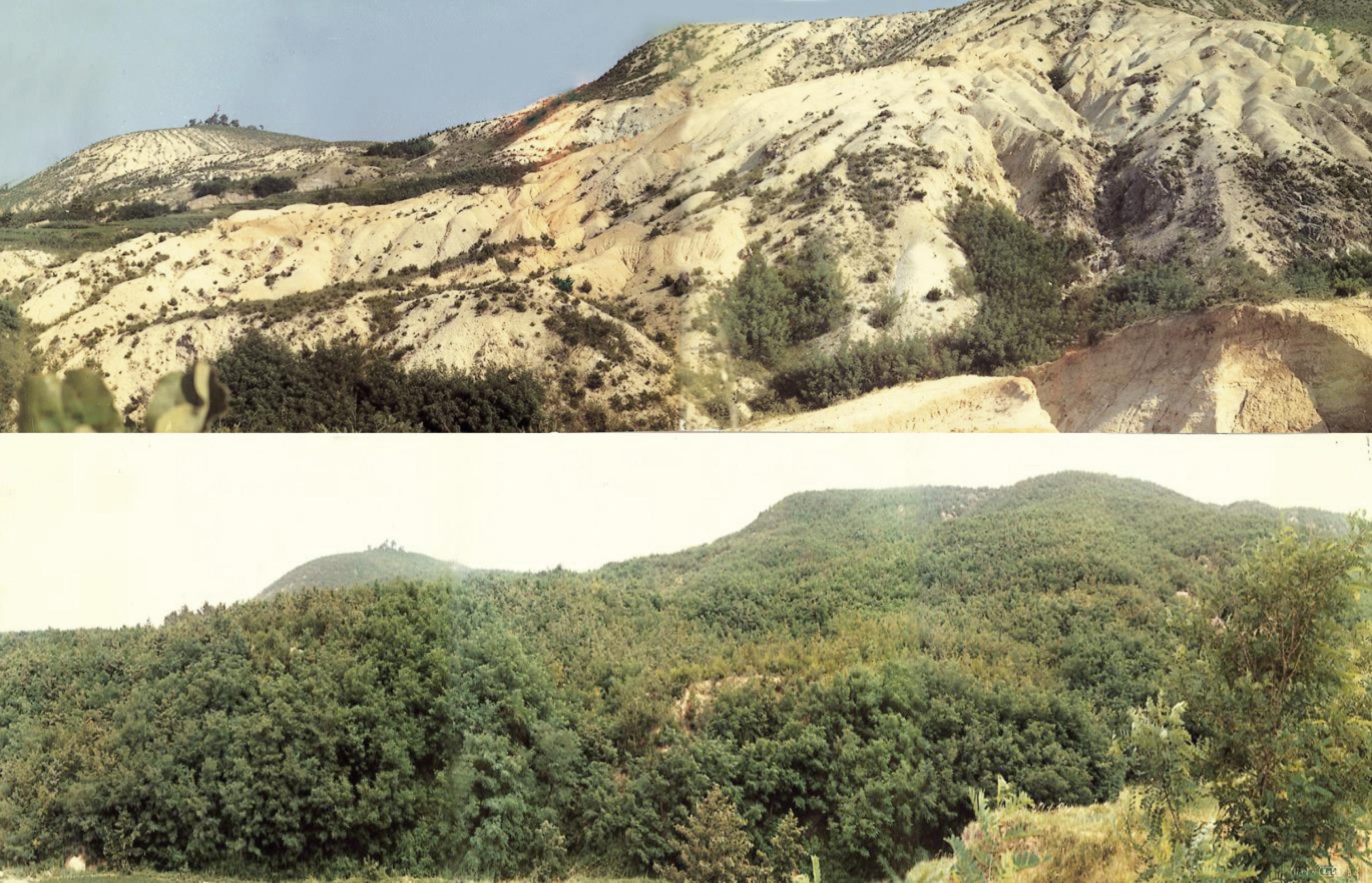 Exitoso control de erosión en Phohang y Youngil