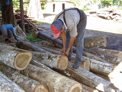 Medición de madera con mecate
