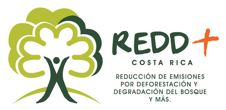 REDD+ realizó la primera mesa redonda sobre el Sistema Nacional de Monitoreo de Bosques